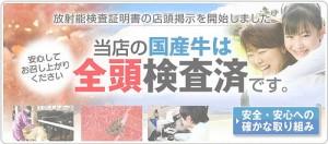 [書籍]日本の魚は大丈夫かー漁業は三陸から生まれ変わる